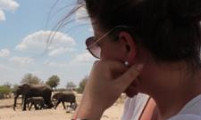 Auslandssemester in Simbabwe: Kathrin Ehrke frühstückt mit Elefanten
