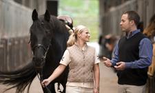 PS-starke Weiterbildungen für Pferdefreunde