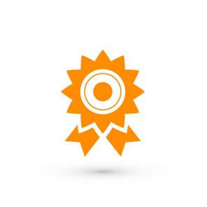 Gesundheitsmanagement Icon 5